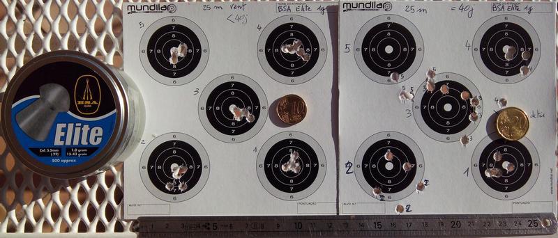 Comparatif plombs 5,5 .22 à 25m - Précision BSA_Elite_5.5_25m_20151031_mini