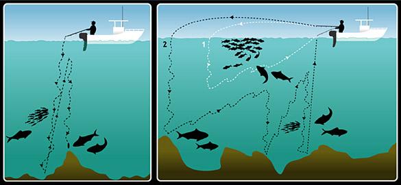 La Pesca del Atún Azul - Atún Rojo - Bluefin Tuna por José Manuel López Pinto / Presentado el 24 de agosto del 2011 Jigging