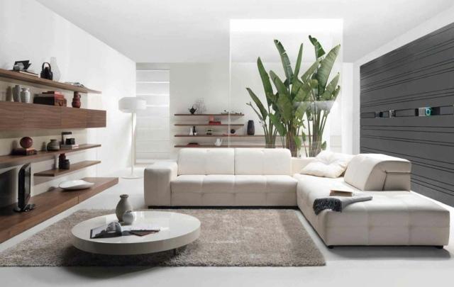 ديكور رائع للصالونات Deco-de-salon-moderne-plante