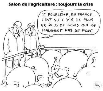 NON A L'ISLAMISATION La_crise