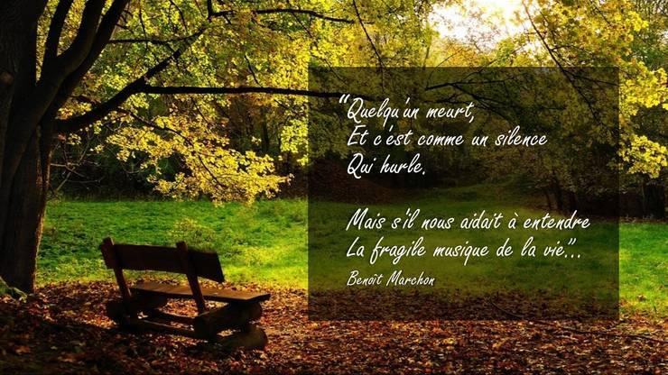 Pour CANTALINE... - Page 9 La-vie