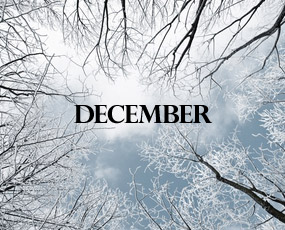 Moeite met de maand december en vroegkinderlijk trauma door Onthecht Image_fgDqwRIcr7rGm01TTTRN4g