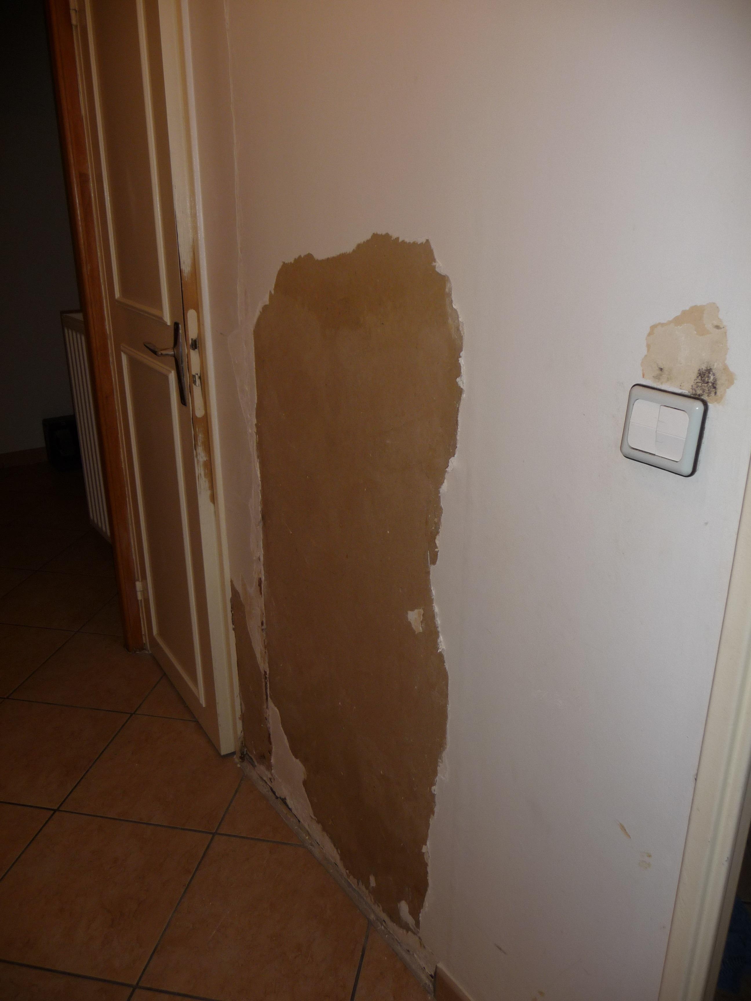 Comment rattraper un mur abîmé - Fibre de verre ? Photo_mur1