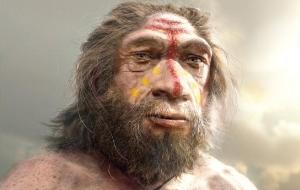 Homem de Neandertal 63
