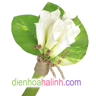 Ba màu hoa cưới đẹp nhất của Điện hoa Hà Linh 571364_4007838774_9c2f753d17