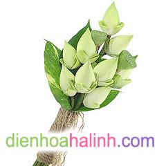 Ba màu hoa cưới đẹp nhất của Điện hoa Hà Linh 607514_4007825620_8f6dea676b_m
