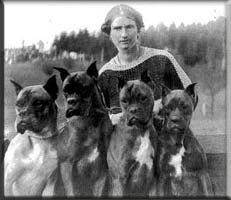 Зоо-ретро, Фотографии - какими они были...породы собак Post-169160-1331132019