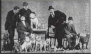 Зоо-ретро, Фотографии - какими они были...породы собак Post-169160-1331132024