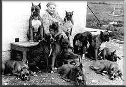 Зоо-ретро, Фотографии - какими они были...породы собак Post-169160-1331132058