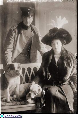Зоо-ретро, Фотографии - какими они были...породы собак Post-169160-1331133005