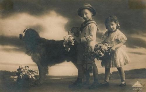 Зоо-ретро, Фотографии - какими они были...породы собак Post-169160-1331133105_thumb