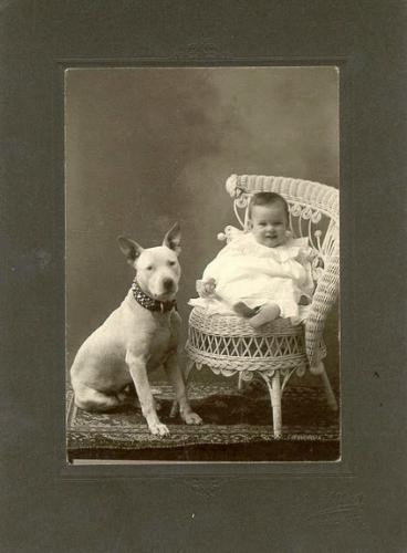 Зоо-ретро, Фотографии - какими они были...породы собак Post-169160-1331134930_thumb