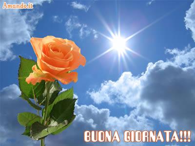 Cazzeggio!!! - Pagina 22 Buon%20giorno%2012