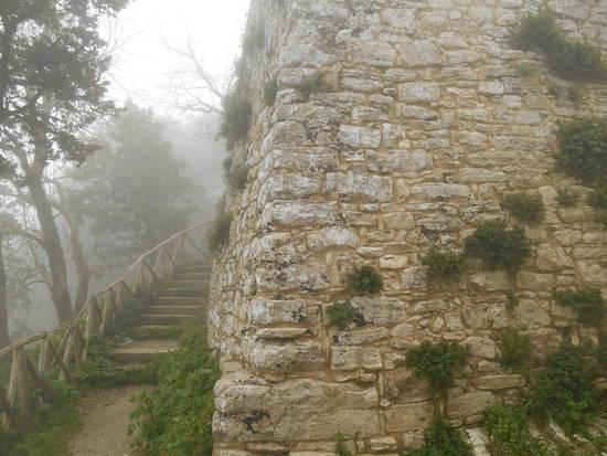Sicilia occidentale, terra, mare, natura e cultura - Pagina 24 B3cadc3d32_7838782_med