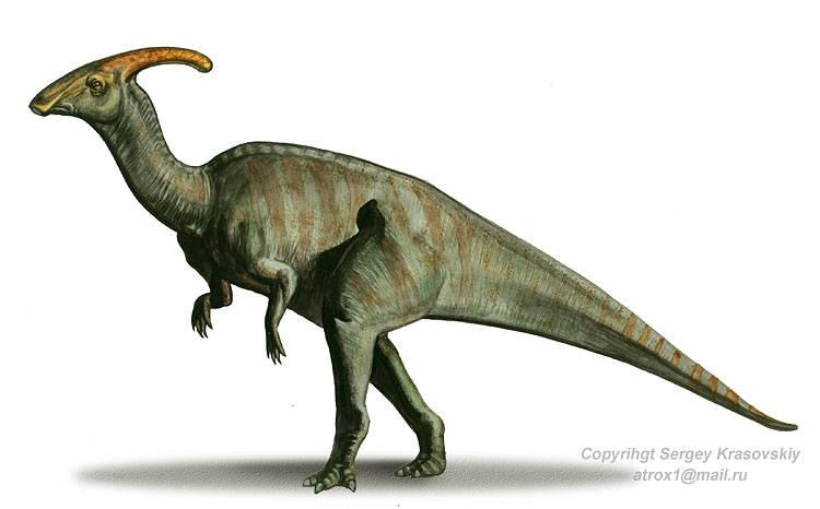 Parasaurolophus [CP] Parasaurolophus-1
