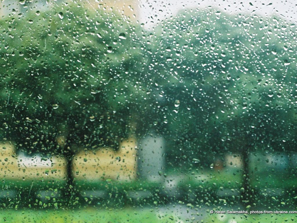 Kisa - Page 2 Summer-rain