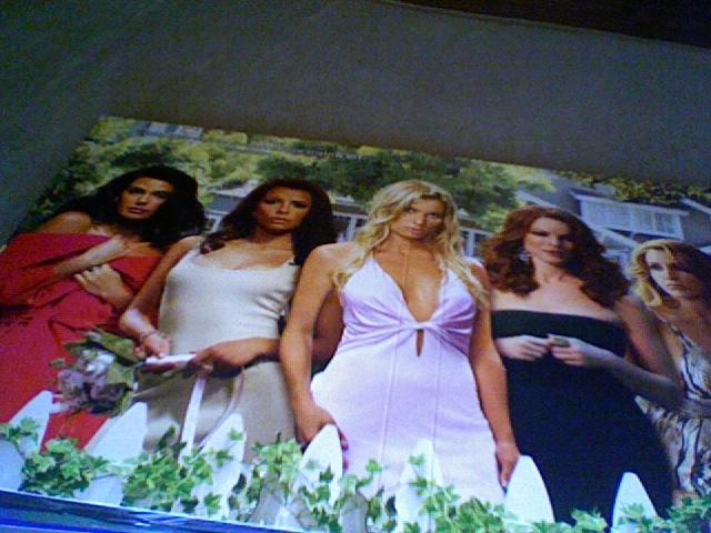 Desperate Housewives - Saison 4 [ABC Signature - 2007] - Page 10 928b6577fe