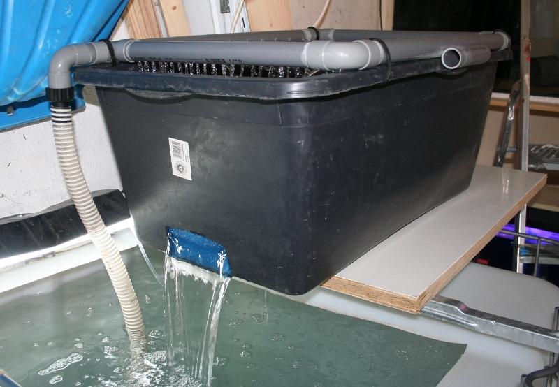 Filtre semi-humide pour cuve de 1.000 litres IMG_7823