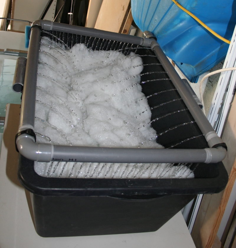 Filtre semi-humide pour cuve de 1.000 litres IMG_7825