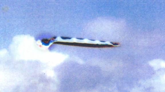 Космическое Раскрытие: Светлой памяти Уильяма Томпкинса: Подрыв доминирования драконийцев  Интервью с Кори Гудом 360_5