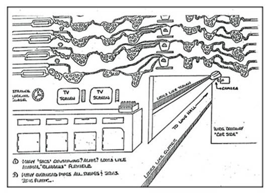 Космическое Раскрытие – 5: Зона 51 и засекреченные подземные сооружения. Интервью Эмери Смита с Джоном Лиром 514_7