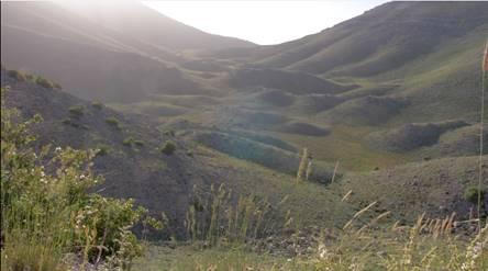 Космическое Раскрытие – 13: Исполины (нефилимы) у горы Хермон. Интервью Эмери Смита с Рикардо Гонсалесом 595_3
