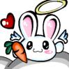 d.rabbit