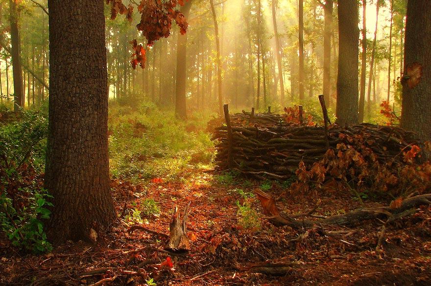 Фантастические фотографии природы :) Priroda_15