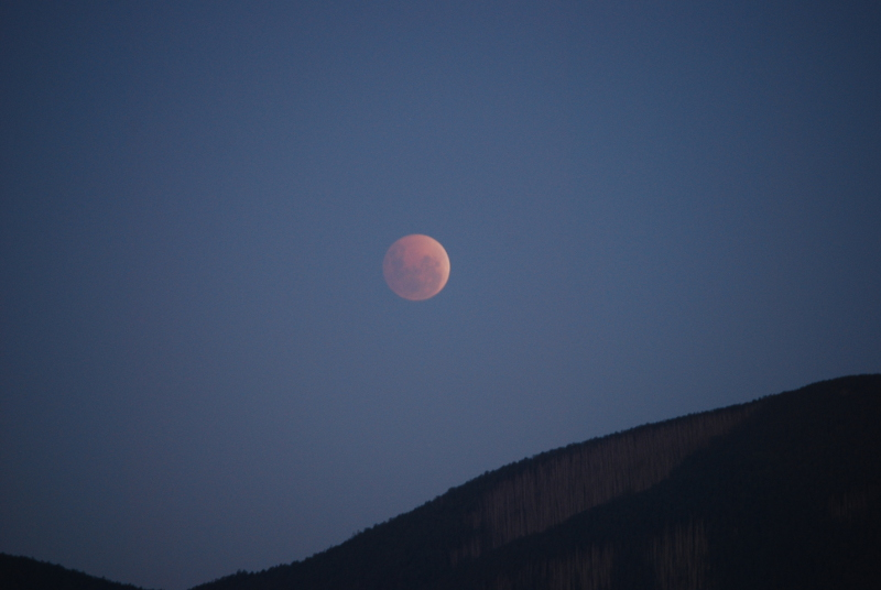 I'm considering a relocation to Florida. Lunar_eclipse_best3