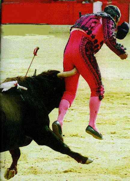 Les images drôles sur le sport Sport-034
