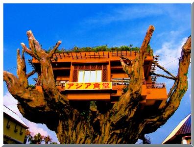 Nhà hàng trên cây Naha Harbor Naha_2