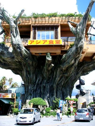 Nhà hàng trên cây Naha Harbor Naha_3
