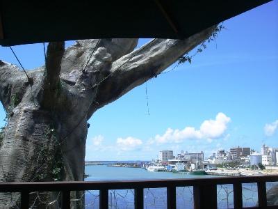 Nhà hàng trên cây Naha Harbor Naha_6