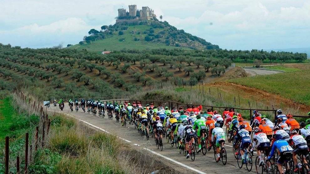 Ciclismo 2017, noticias varias... 14839800780404