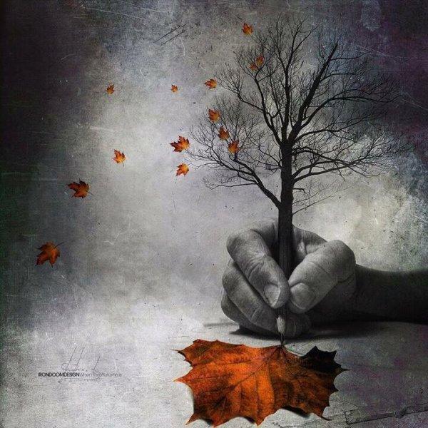 ... Y caen las hojas, llega ....¡¡¡ EL Otoño !!! - Página 8 3192300479_1_2_bEhae1Se