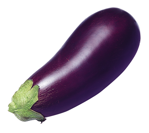 UTAU look alikes for teh lulz Eggplant