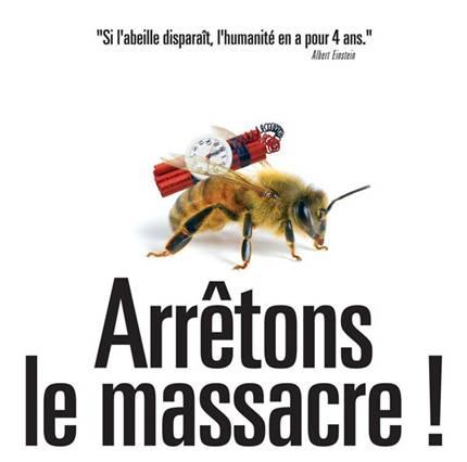 Les abeilles, témoins du bon état de notre environnement, disparaissent massivement Image006