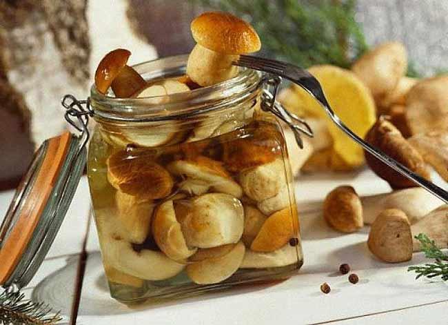Хотите очистить организм от грибов? Перестаньте их кормить! Griby