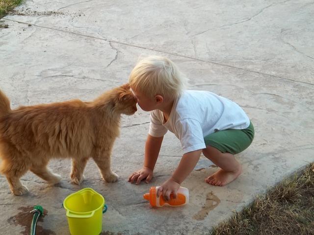 9 признаков, что ваша кошка любит Вас Original_3__econet_ru