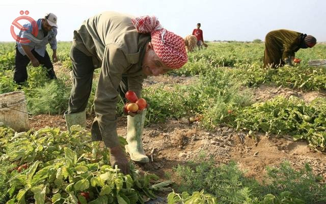 Agriculture: The decision to ban imports saved 150 billion dinars for the state 19384