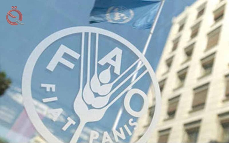 The United Nations: The food situation of Iraq is safe 20092