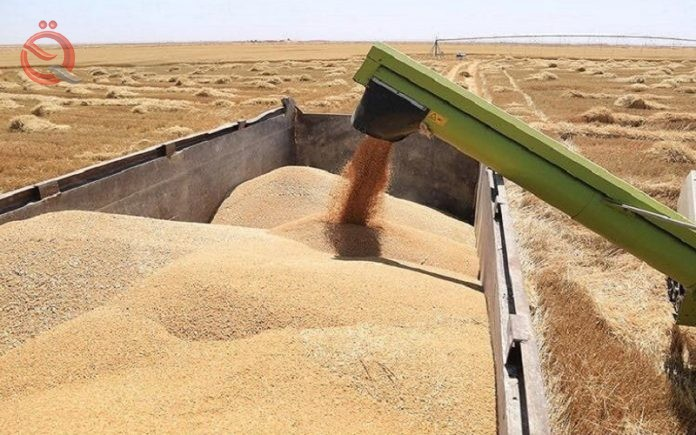 Iraq re-exports grain after a break of half a century 20426