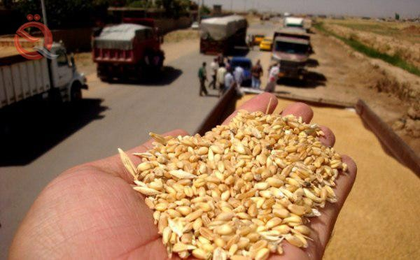 Disclosure of a five-year plan to declare Iraq self-sufficient with all agricultural products 20428