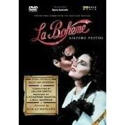 La bohême (Puccini, 1896) 21X68F37RXL._SL500_AA180_