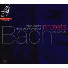 bach - Les Motets de J.-S. Bach 31zplILvW9L._SL500_AA240_