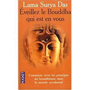 Bibliothèque/Bouddhisme Tibétain : Eveillez le Bouddha qui est en vous de Lama Surya Das 41J2VY7K21L._SL500_AA300_