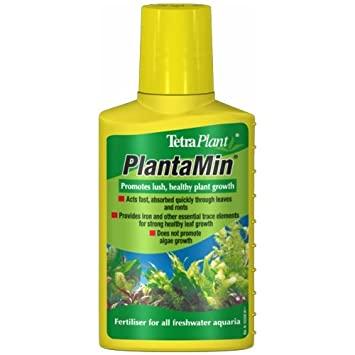 Plantado Low Tech 41QgnOC0U5L._SY355_