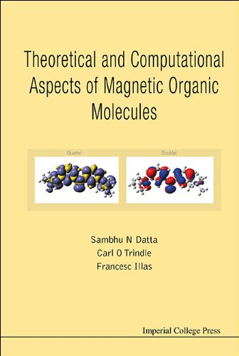 Theoretical and Computational Aspects of Magnetic Organic Molecules 41hbfNvxlqL