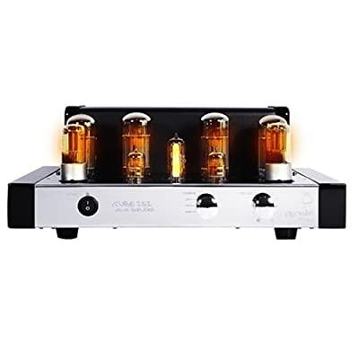 Amplificadores a valvulas de baixo custo 41qt2YieJ8L._SS400_