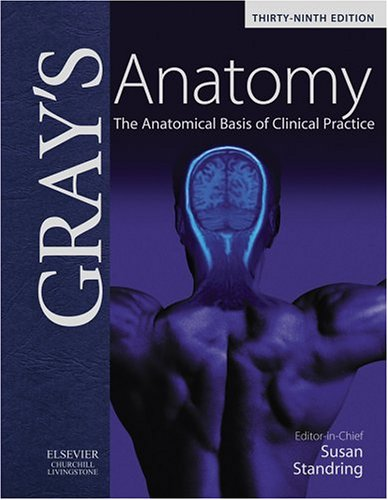 Gray's Anatomy: The Anatomical Basis of Clinical Practice 512GXBVBX8L